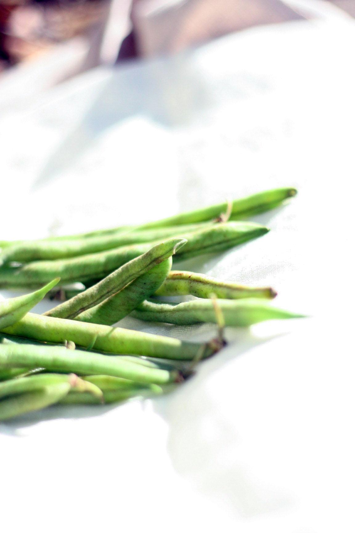 Garlic Green Beans Feisty Green Beans Crisp Pickled Green Beans Deep ...